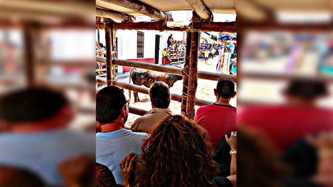 Las personas residentes de Betsaida Casa de Misericordia disfrutan de las tradicionales fiestas de San Bartolomé en Beas