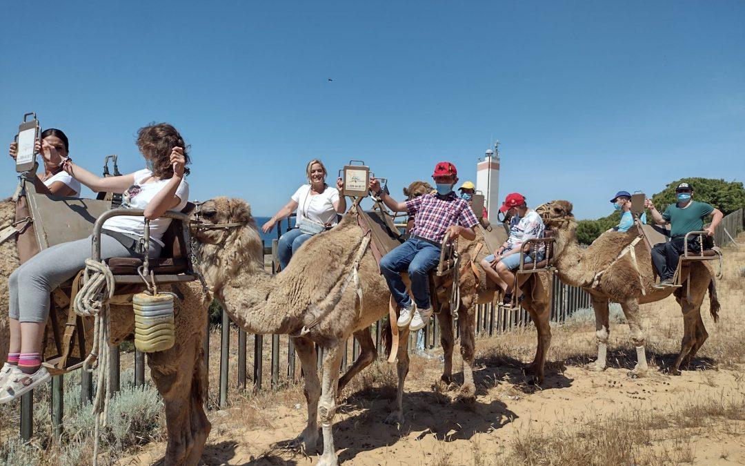 El Complejo Residencial visita aires africanos