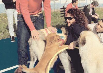 fotos perros de terapia (4)